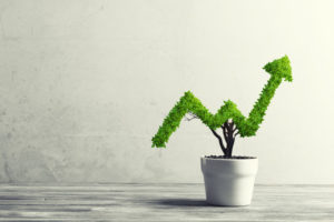 plant shaped as a graph, symbol of profitability