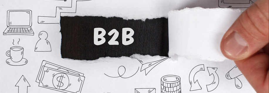 B2B marktonderzoek in België, Nederland, Frankrijk, Luxembourg
