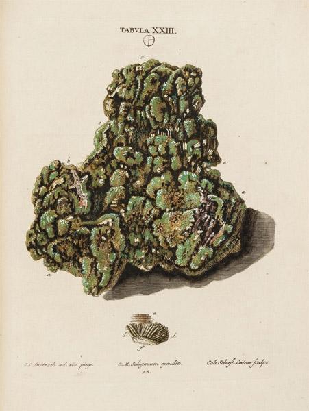 minéralogie par Casimir Christoph Schmiedel