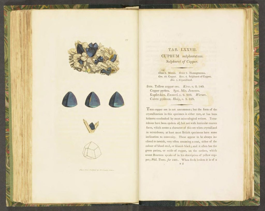Illustration d'un sulfure de cuivre dans l'ouvrage British & Exotic Mineralogy de James Sowerby