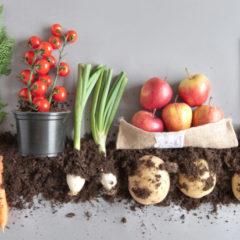 [Podcast] Emna Everard révolutionne le marché du bio avec Kazidomi
