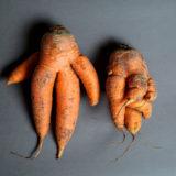 Minder goed uitziend fruit en groenten zijn een manna voor de handelszaken